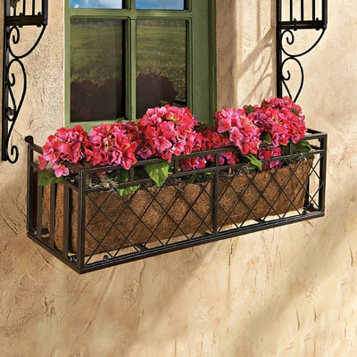 Best Planters for Your Container Garden - Window Boxes