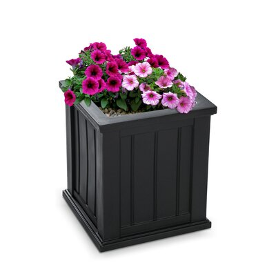 Best Planters for Your Container Garden - Deep Planter Boxes